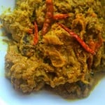 Gosht Dopiaza - Lamb in an Onion Gravy + Why I Can Juggle Work and Cooking